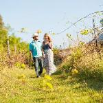 4 Stroll through our vineyard (40680230)