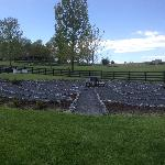 White Oak Garden