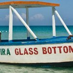 Foto de Famous Vincent Glass Bottom Boats