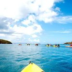 Bio Bay Kayaking