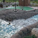 Photo of Big Don's Wild River Mini Golf