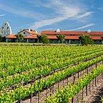 Bridlewood Estate Winery Foto