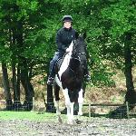 Cholwell Riding Stables Photo