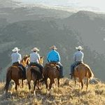 Horse rides overlooking Yellowstone National Park