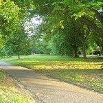 Devonport Park Photo