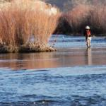 Photo of High Desert Angler