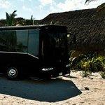 Limo Beach Tours