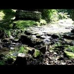 Arrow Rock State Historic Site Aufnahme