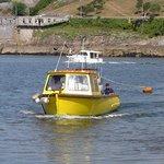 Ferry - Copper