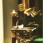 Musee de Sciences biologiques Docteur Merieux