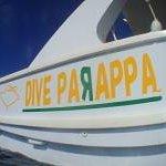 Foto de Dive Parappa