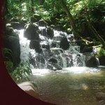 Foto de Kamokila Hawaiian Vllage