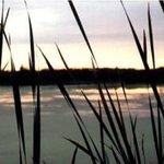 Little Cataraqui Creek Conservation Area Foto
