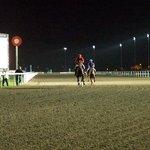 Foto de Chessington Equestrian Centre