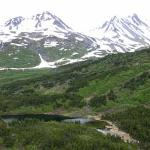 Chugach Backcountry Fishing - Day Trips-billede