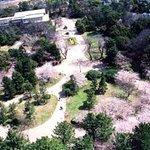 Toyohashi Park