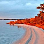 Fenwick Island State Park Photo