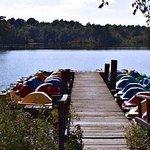 Killens Pond State Park Foto