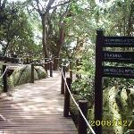 senderos por la isla porto Belo