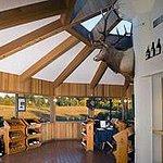 Foto de Elk Cove Vineyards