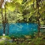 Foto de Matevulu Blue Hole