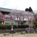 Kuil Shibayama Nioson Kannon