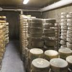 Fifth Town Artisan Cheese Photo