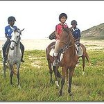 Jah Works Riding Stables