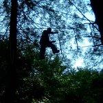 Go Ape at Margam Port Talbot