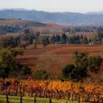 Hanna Winery Photo