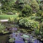 Highdown Gardens