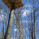 Sky High Aerial Adventure Park Photo