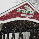 Photo of Jackson Ski Touring Foundation