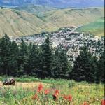Jackson Hole Trail Rides Bild