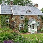 Judith Queree's Garden