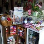 Laine de Bergere Yarn Shop