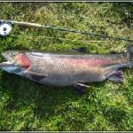 Larkwood Trout Fishery Photo