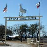 Lightning Ranch
