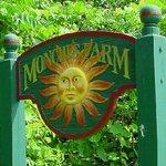 Monches Flower Farm