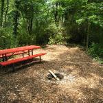 Montour Trail Photo