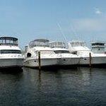 New Jersey Sea Grant Consortium