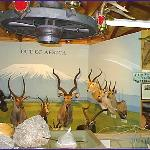 Vilas County Historical Museum Foto