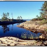 Massasauga Provincial Park Photo