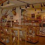 Jensen Arctic Museum