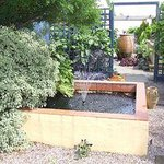 Paddock Farm Nursery & Water Gardens