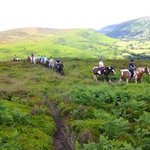 Trevelog Farm Pony Trekking