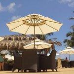 Happy Panda beach bar and restaurant Photo