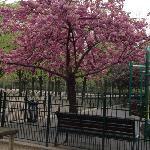 near playground