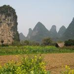 Walking through the vegetable farms behind the hotel to Yulong river