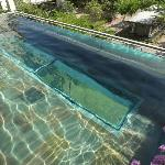 glass bottom pool on the 3rd level